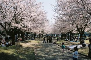 常願寺公園2