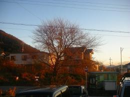 2008_1214画像0020