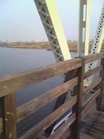 木橋ひだり