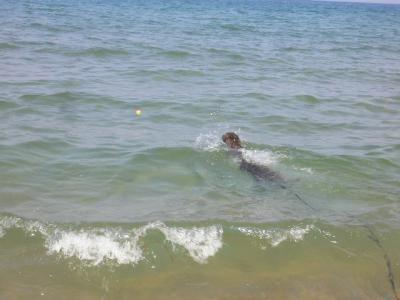 初泳ぎ02