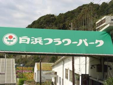 CIMG1608furawa-.jpg