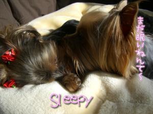 眠いでちゅねん。