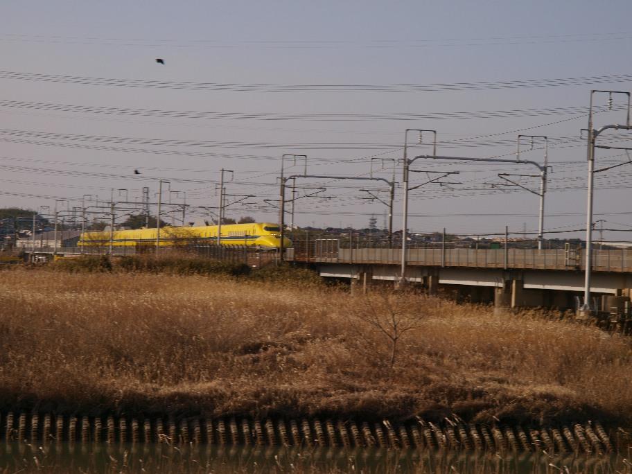 P2159111.jpg
