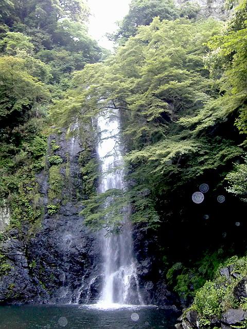7月7日滝