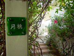 石垣のyugafu-yamabare(ゆがふ山原)に宿泊♪