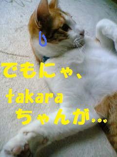 08-06-04_12-41.jpg