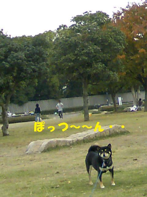 DCF_0076 (2)