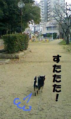 DCF_0015 (3)