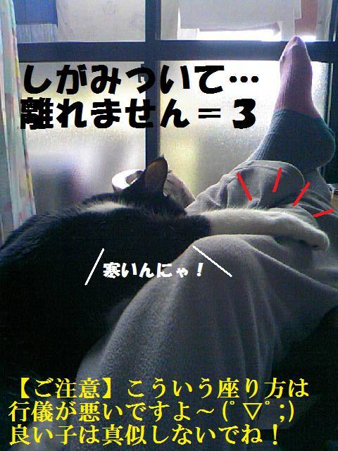 DCF_0023 (2)