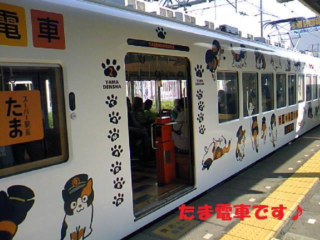 DCF_0001_20091018225106.jpg