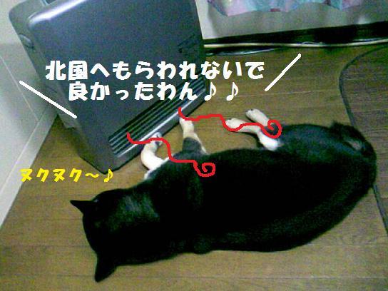 DCF_0001_20091220020116.jpg