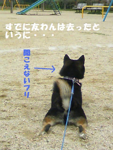 DCF_0002_20090626011932.jpg