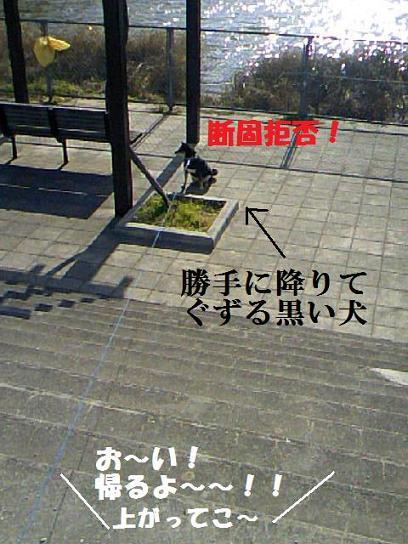 DCF_0004_20091220010523.jpg