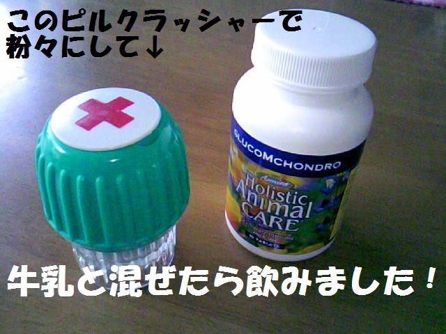 DCF_0005_20090414024803.jpg