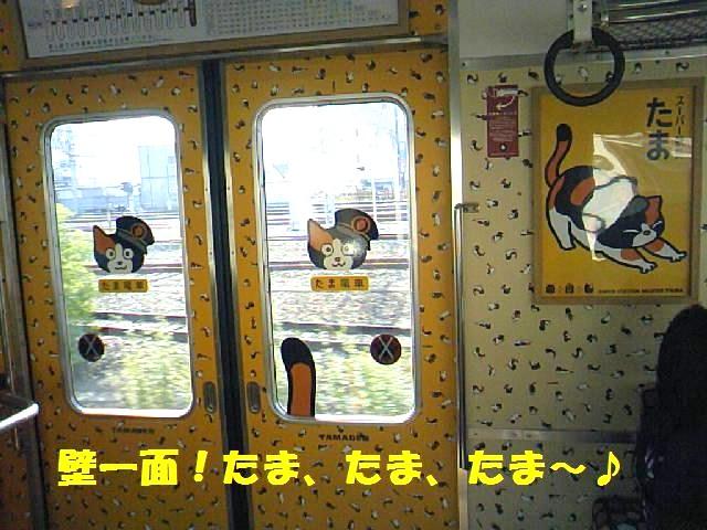 DCF_0005_20091018230242.jpg