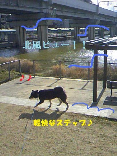 DCF_0006_20091220010529.jpg