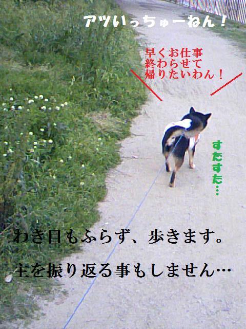 DCF_0007_20090514234313.jpg