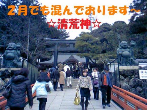 DCF_0008_20090204004034.jpg