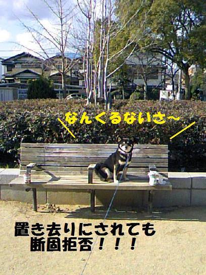 DCF_0009_20091220013101.jpg