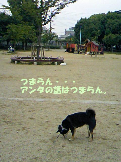 DCF_0010_20090625033743.jpg