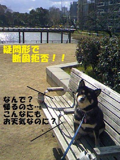DCF_0010_20091220013108.jpg