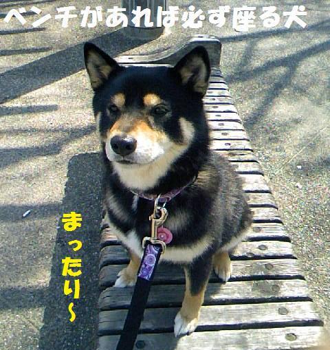 DCF_0014_20090421001411.jpg