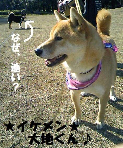 DCF_0016_20081221225347.jpg