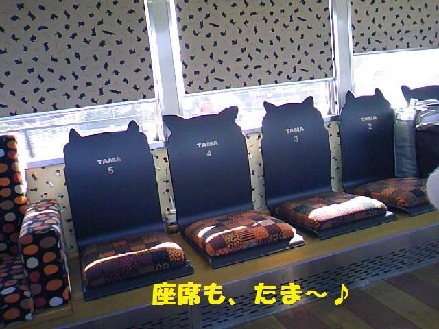 DCF_0016_20091018230236.jpg
