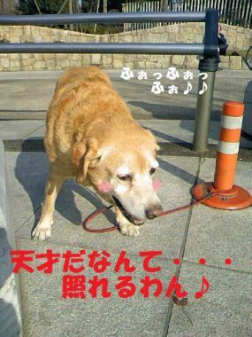 DCF_0017_20090207023638.jpg