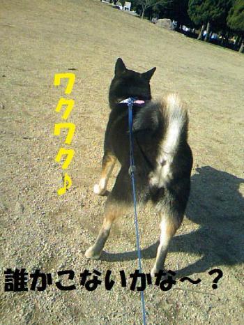DCF_0018_convert_20081220233253.jpg