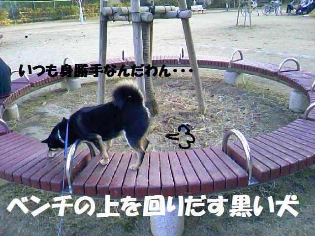 DCF_0019_20081203014749.jpg