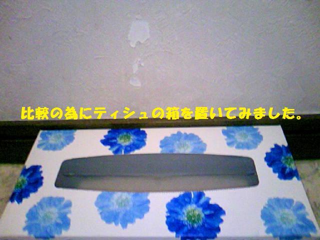 DCF_0020_20090512235123.jpg