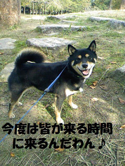 DCF_0021_20081030030751.jpg