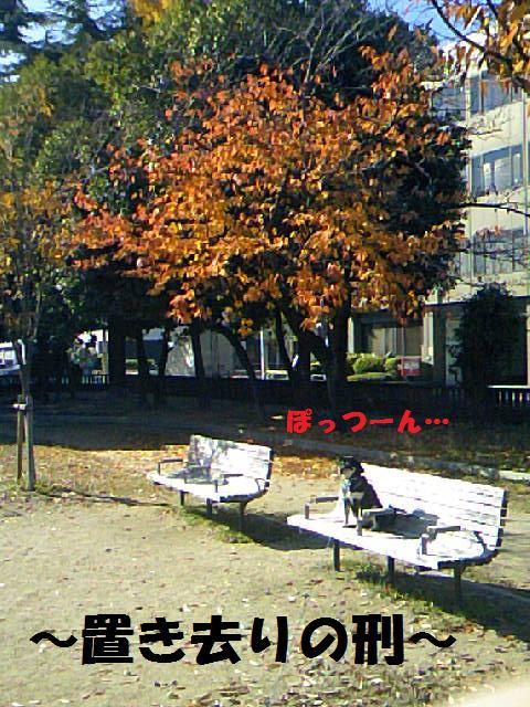 DCF_0023_20091208012401.jpg