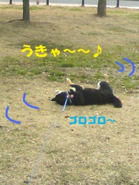 DCF_0024_20090124185511.jpg