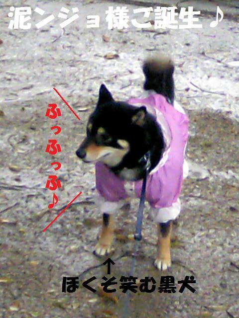 DCF_0027_20090417003015.jpg