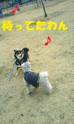 DCF_0031_20090124190457.jpg