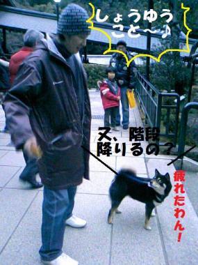DCF_0032_20090203234619.jpg