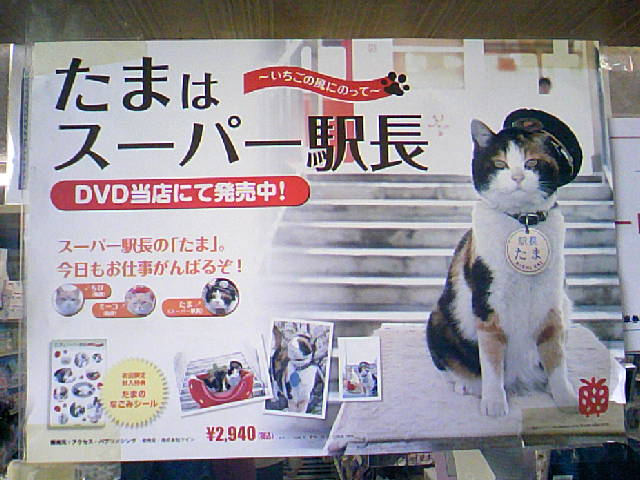 DCF_0033_20091018234327.jpg
