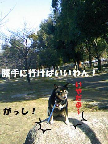 DCF_0034_convert_20081222155848.jpg