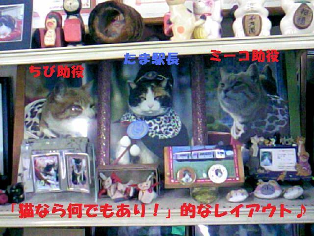 DCF_0035_20091021184248.jpg