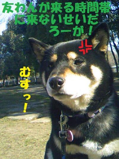 DCF_0035_convert_20081220230130.jpg