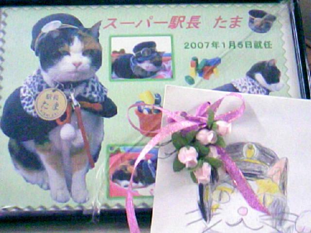 DCF_0037_20091021220512.jpg