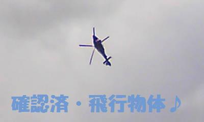 DCF_0040_20090124191420.jpg