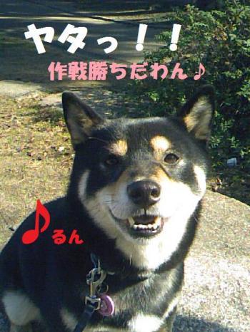 DCF_0041_convert_20081222160350.jpg