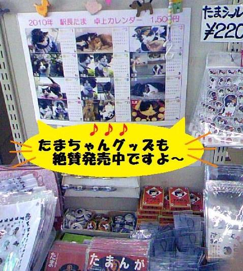 DCF_0042_20091021182632.jpg