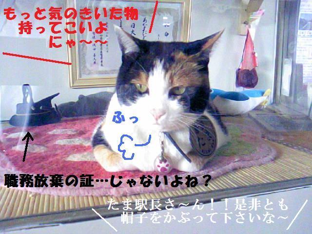 DCF_0049_20091023143037.jpg