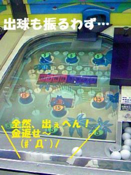 DCF_0051_20090528090751.jpg