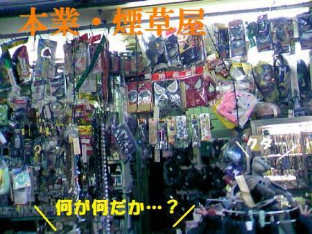 DCF_0061_20090528100740.jpg