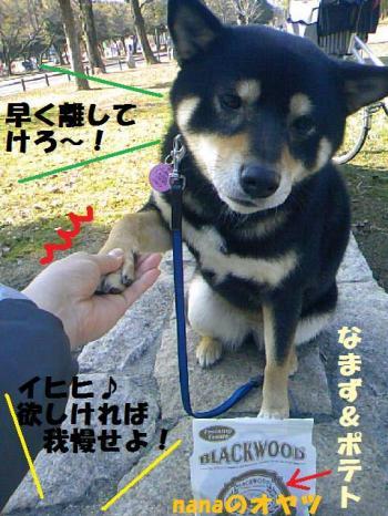 DCF_0068_convert_20081224040502.jpg